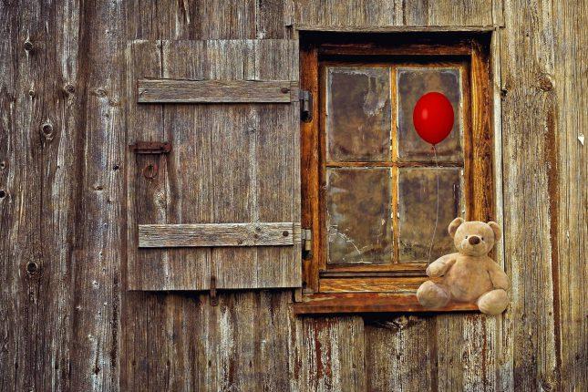 beer voor het raam op berenjacht